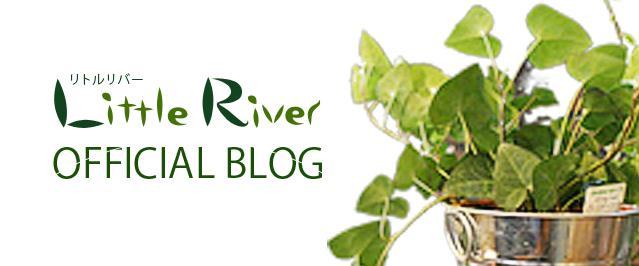 blog_banner